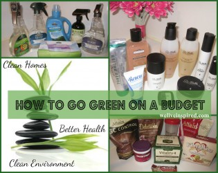 Shop Green on a Budget
