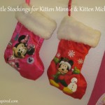 Since Fluffy's babies are named Mickey & Minnie, I thought these were the perfect little stockings for the kittens!