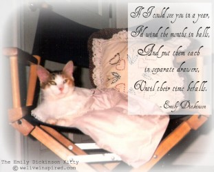 The Emily Dickinson Kitty