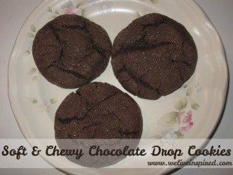 Chocolate Drop Cookie Recipe