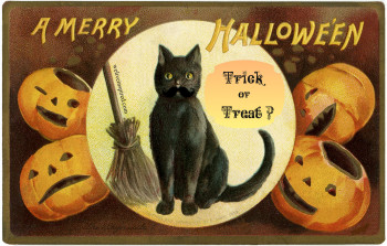 Trick or Treat Silly Cat Graphic